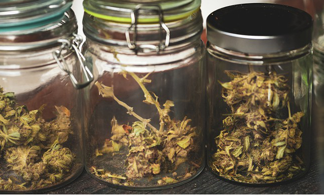 Ways to Store Weed