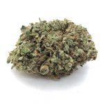 Black Roses marijuana