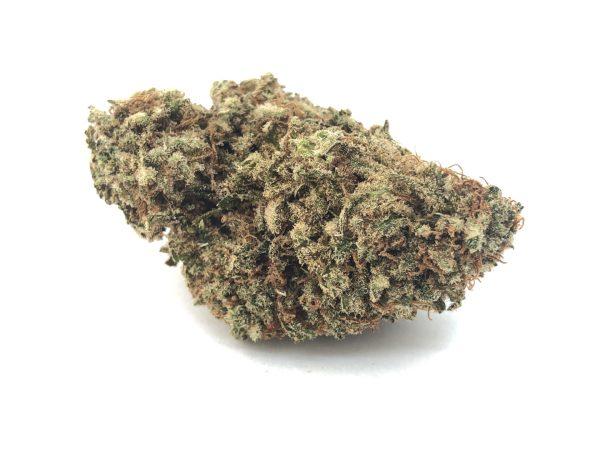 Exodus Cheese marijuana strain