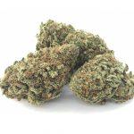 Platinum Bubba Kush marijuana strain front