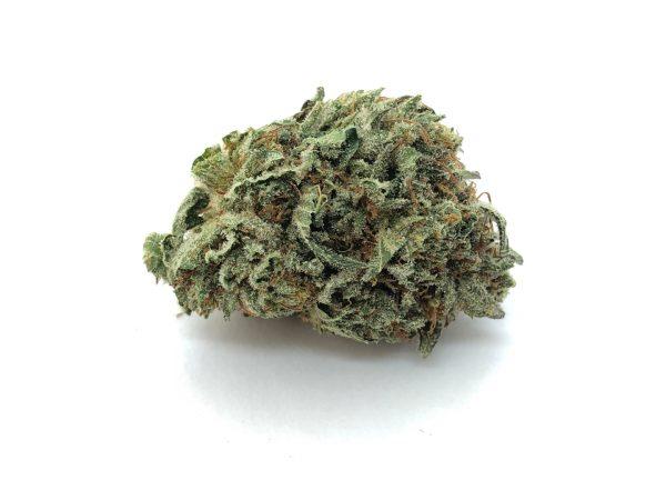 Snow White marijuana strain