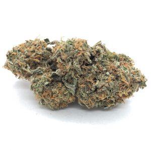 AK47 marijuana strain