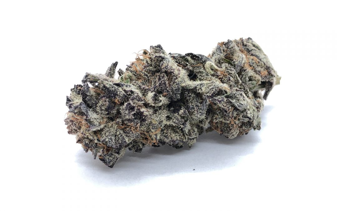 Blackberry Cream (AAAA) – Hierba