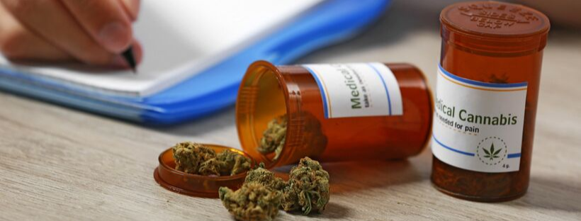 Medical Uses of Sativa vs Indica