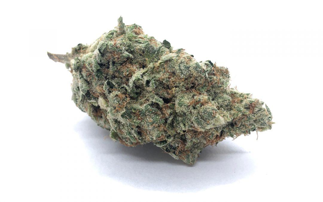 Truffle Butter (AAAA) – Hierba