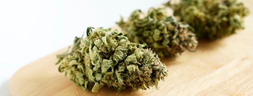 Select Your Marijuana Strain